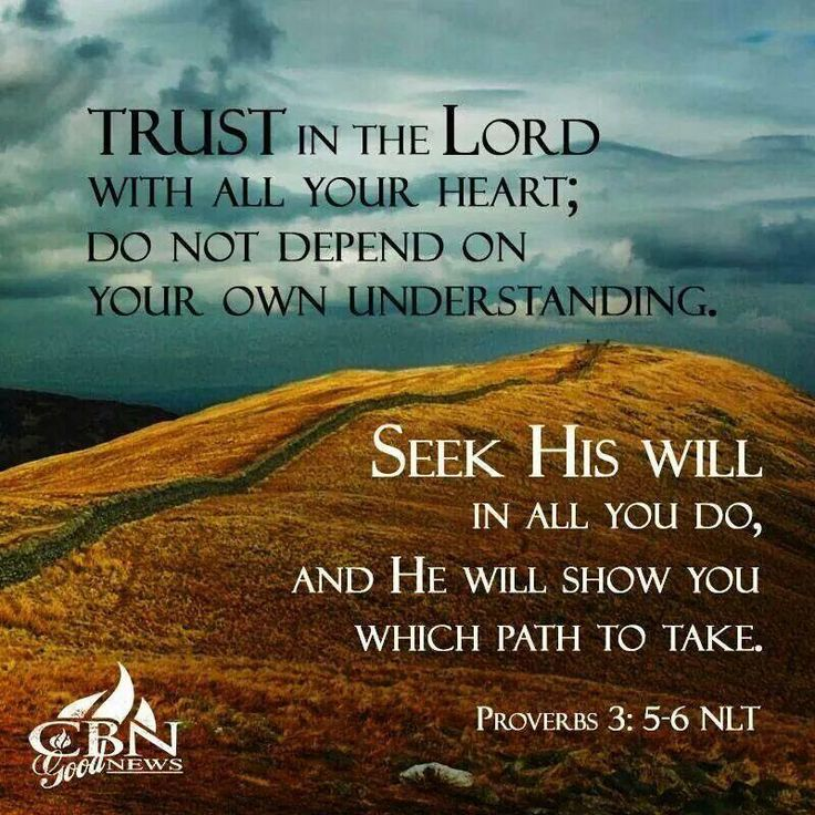 Trusting In The Lord Quotes: Proverbs 3:5-6 NLT