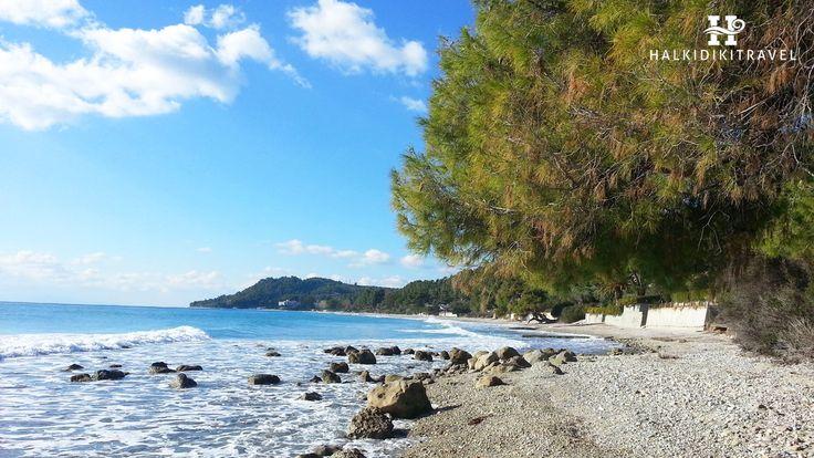 #Mola #Kalyva #beach in #Halkidiki. Visit www.halkidikitravel.com for more info. #HalkidikiTravel #travel #Greece