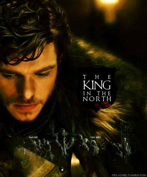 I don't think I need to say much about Robb. (I misspelled need and ned at first and had to hold back the tears.)