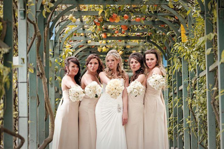Photos around Villa Carlotta's beautiful gardens & pergolas!