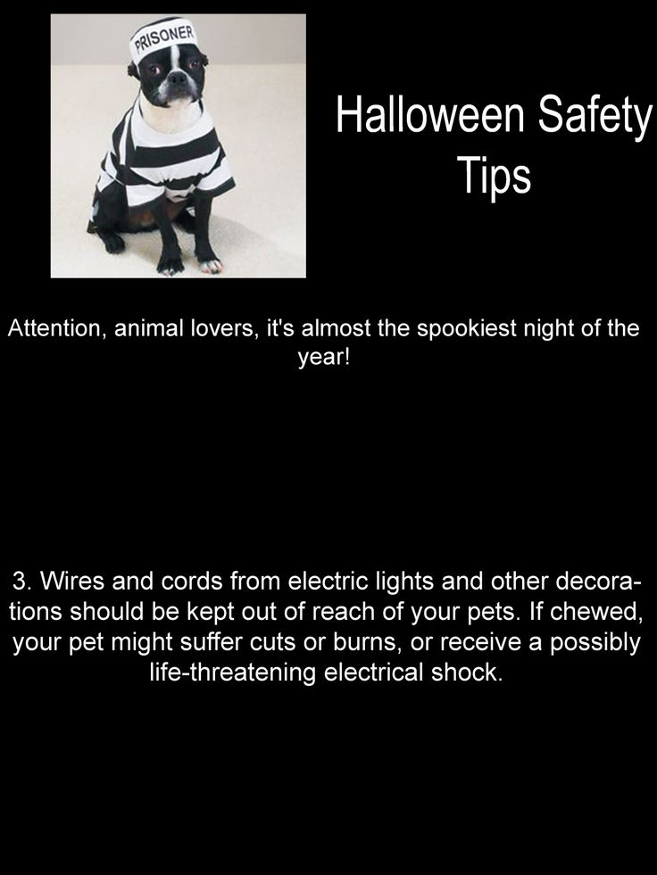 Halloween Safety Tips Halloween safety tips, Halloween
