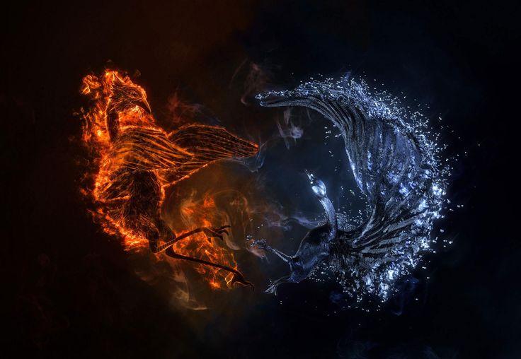 Water Vs Fire Arm Wrestling: HD Good Vs Evil Fantasy Bird