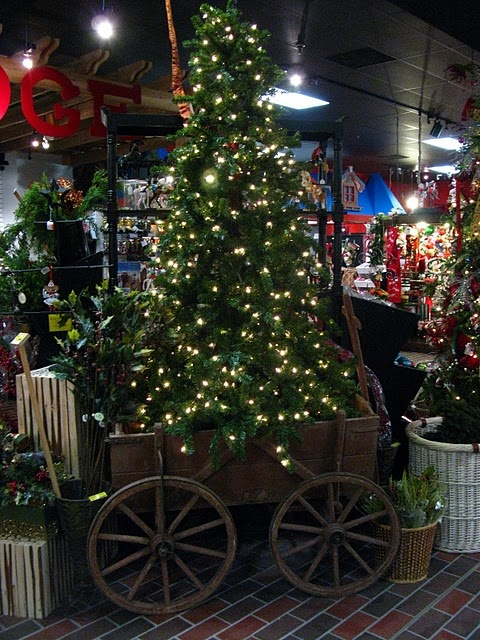 Christmas Tree in a wagon...I've done this, but with a smaller wagon! It's so cute and adds height to a tree...and helps with curious dogs!