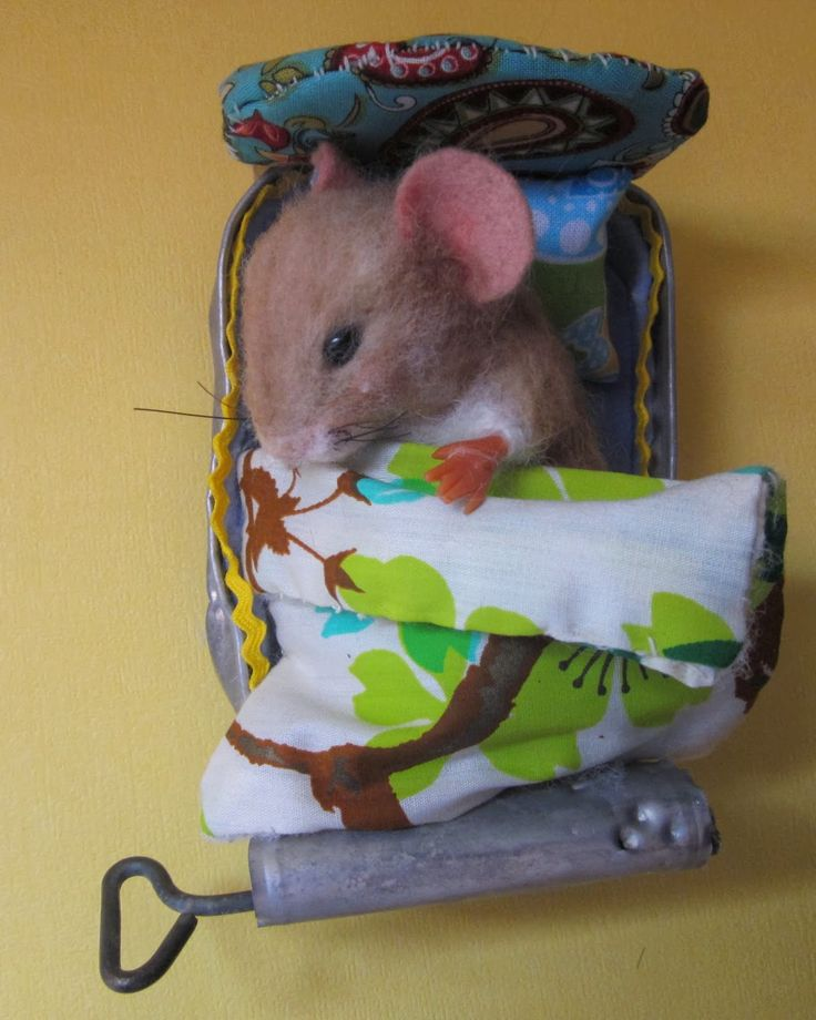 Sardine can made into mouse bed  - Needle Felted Art by Robin Joy Andreae