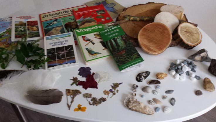 Inspiratietafel Natuur. Deze inspiratietafel is gebaseerd op het thema natuur. Diverse materialen uit en boeken over de natuur kunnen inspireren bij het kiezen van een onderwerp bij een opdracht, het maken van onderzoeksvragen of het brainstormen over activiteiten.  Laat kinderen zelf brainstormen, filosoferen en keuzes maken.