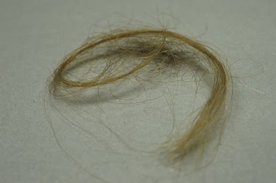 Locks of Mala and Edek's hair on display at Auschwitz museum.