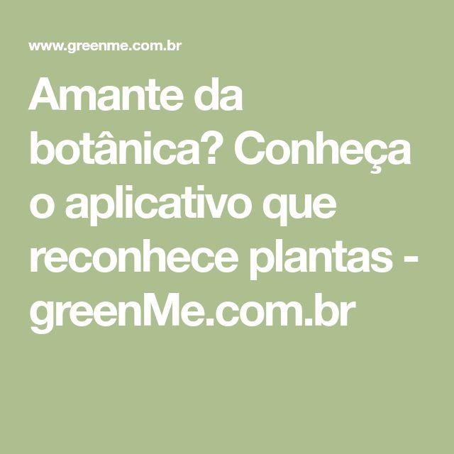 Amante da botânica? Conheça o aplicativo que reconhece plantas - greenMe.com.br