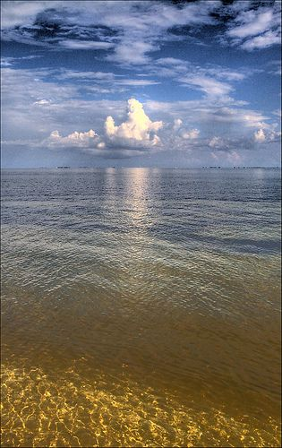 ~~Tampa Bay ~ Florida by Tebographics~~