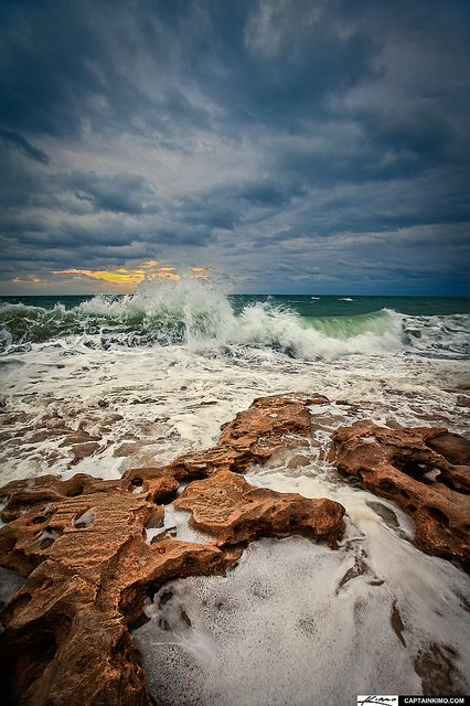 Enjoyable Florida http://www.travelandtransitions.com/destinations/destination-advice/north-america/