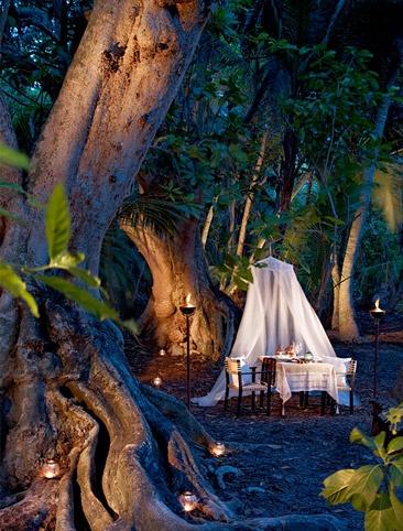 Jungle dinner in the Maldives.