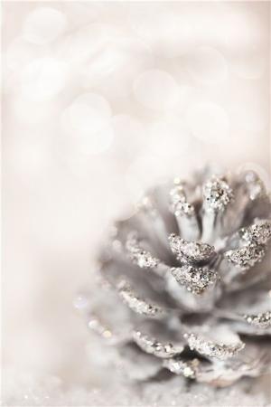 glitter-covered pine cone