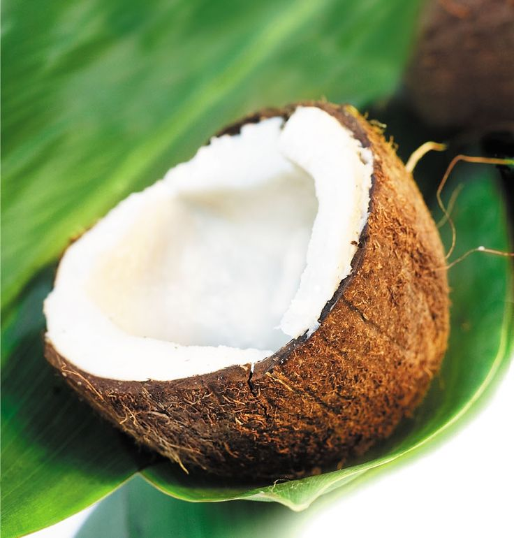 eat a coconut and try the milk - We did this tonight.  It looks about a million times better than it tastes!  YUCK!