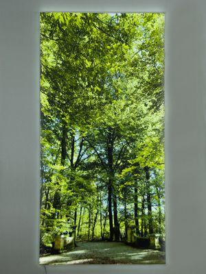 LEUCHTBILDER FLAT - Ihr Motiv hinterleuchtet und superflach als LED Bild - Imagelight - LED, Bild und Druck