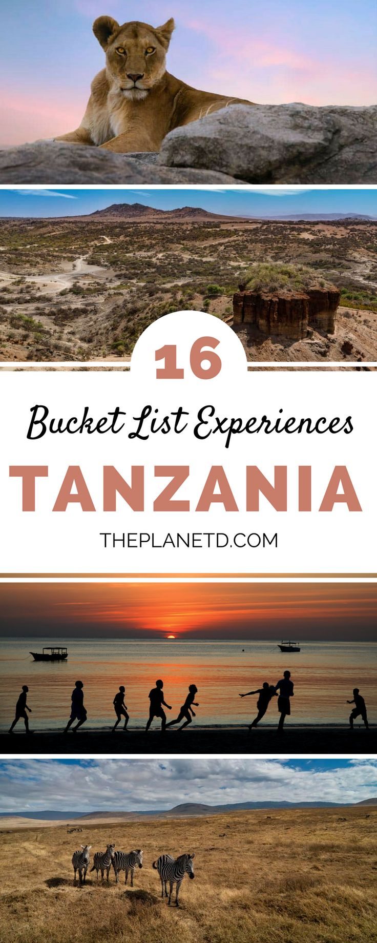 While the Serengeti is the star attraction, there are many things to do in Tanzania besides viewing the wildlife. Here are 16 of our favorite adventurous things to do in Tanzania ranging from the summiting Mt Kilimanjaro to diving in Zanzibar to taking a balloon safari in the Serengeti. Travel in Africa. | Blog by the Planet D #Tanzania #Africa