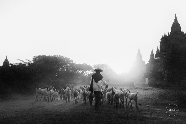 © Shane O Sullivan SOSAC Photography #Burma #Myanmar #Bagan #travelphotography
