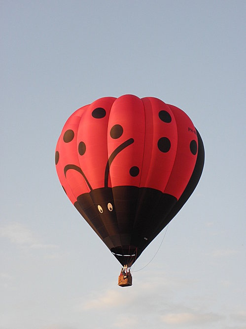 ladybug hot air balloon - oh yes!!