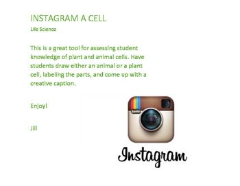 iPhone and Instagram layout template for students to create their own animal cell or plant cell post. Students can draw, label, and caption their post.
