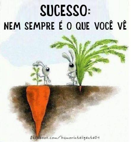 sucesso-nem-sempre