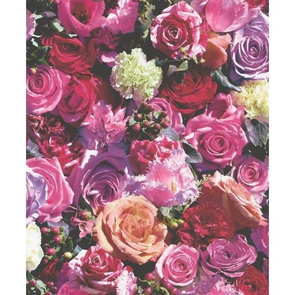 Wallpaperdirect.com Floral Blooms Wallpaper Rose By ($40) ❤ liked on Polyvore featuring home, home decor, wallpaper, backgrounds, borders, picture frame, rose flower wallpaper, rose home decor, blossom wallpaper and floral pattern wallpaper