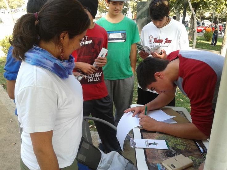 Firmas en Stand de Pedro de Valdivia. #DifundeRJF https://www.facebook.com/RescatemosJuanFernandez