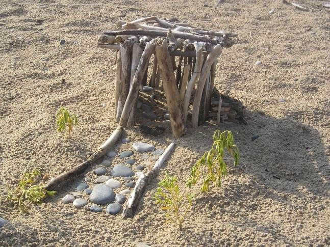 Build tiny longhouses