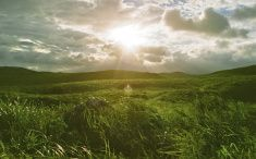 【中国地方: 山口 広島 岡山 島根 鳥取】秋吉台 山口県 Scenic Landscape #japan #akiyoshidai #nature #landscape