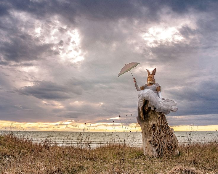 Alena Landelius - Filosoferande Hare. Photo collage of a hare philosophizing by the sea. Available as poster and laminated picture at Printler, the marketplace for photo art.