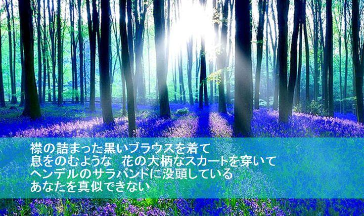 詩集<月下の道>より  <真夏の夜の夢>