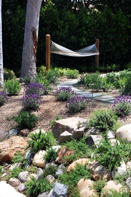 Gardening in a dry area. Gardens. Landscaping.