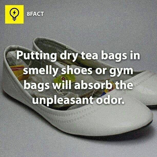 Putting dry tea bags in shoes to absorb odor