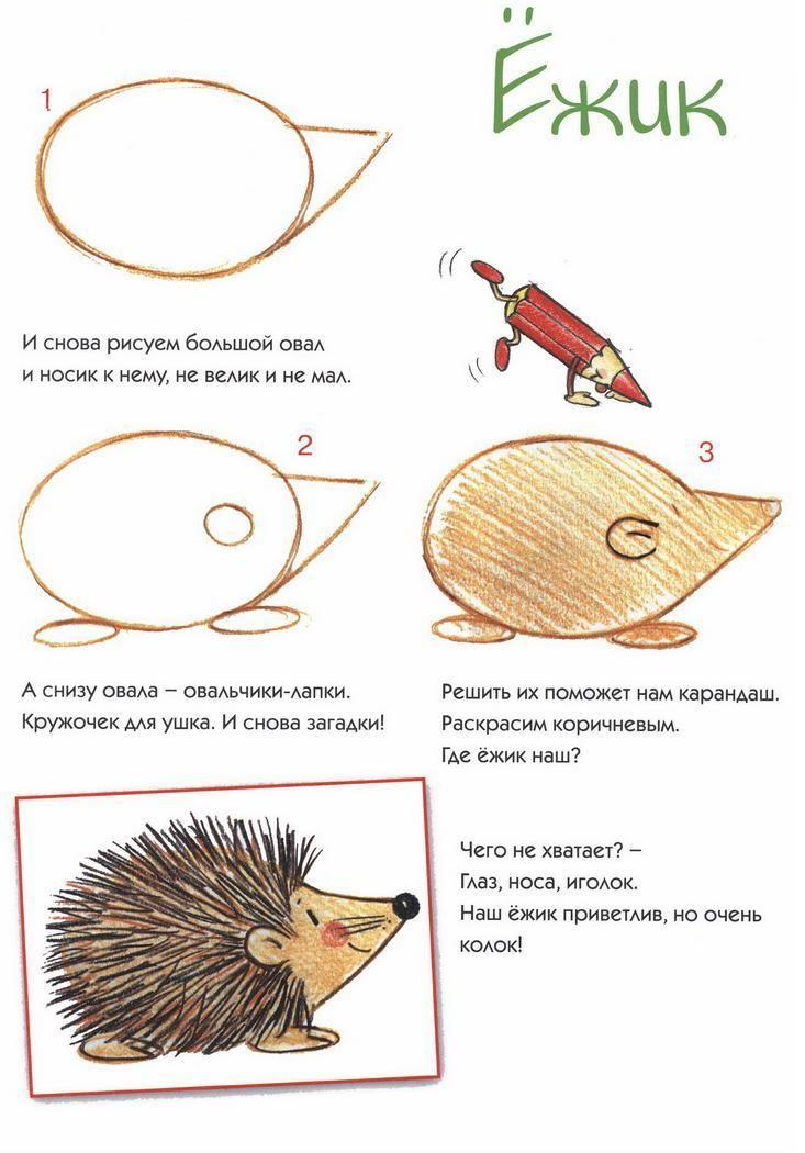 (2013-05) ... a hedgehog #3