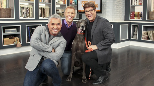 Cesar Millan, the world famous Dog Whisperer, caused quite a frenzy when he visited our set. Not only did he share amazing insights, he answered pet questions from viewers, and taught Steven and Chris how to properly walk their beautiful great dane Maxi.