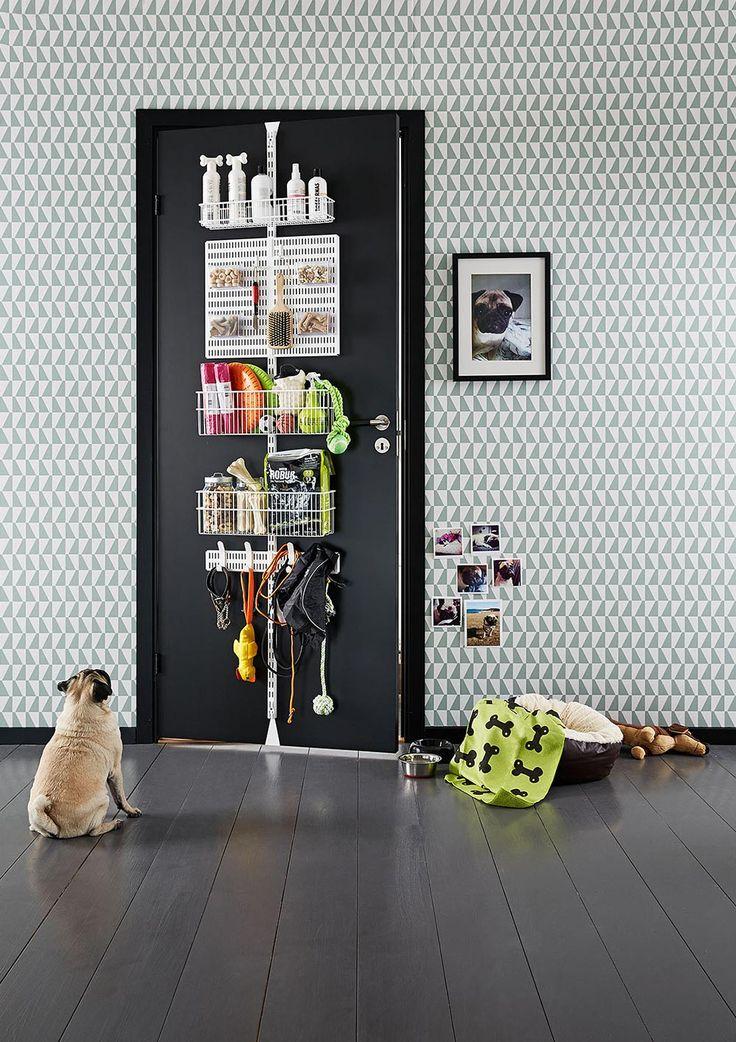 Elfa Door and wall rack for the dog.