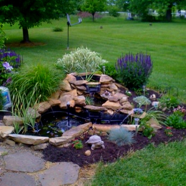 56 best images about pond ideas on pinterest backyard for Pond shade ideas