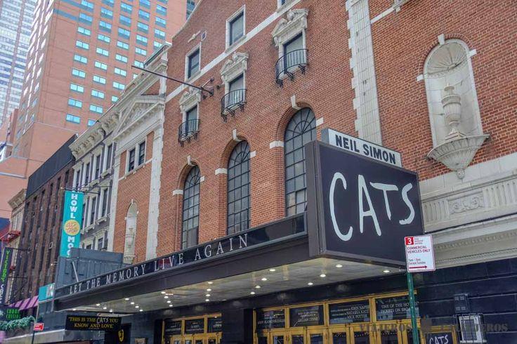 Cats. Los 5 musicales más increíbles de Broadway (y como comprarlos)