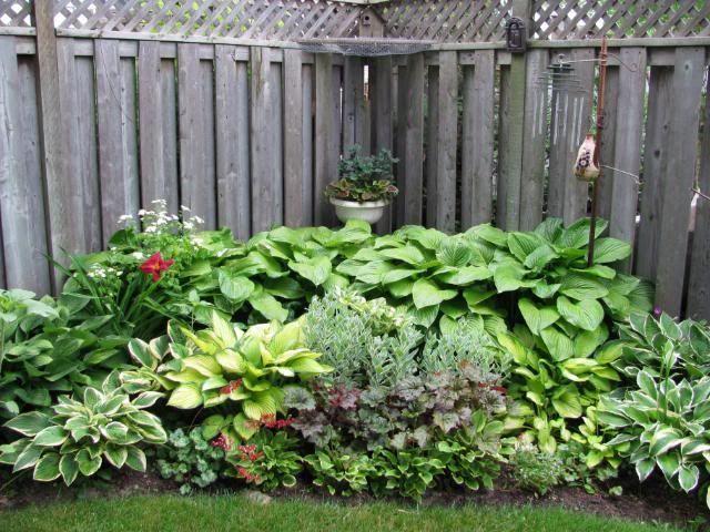 Corner hosta garden found on shade for Small corner garden ideas