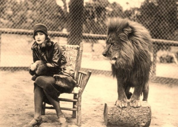 """From the body language, Greta Garbo """"vants to be alone"""" here, too, rather than in lion company!"""