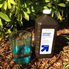 Use hydrogen peroxide to prevent root rot and other all-natural plant fertilizers
