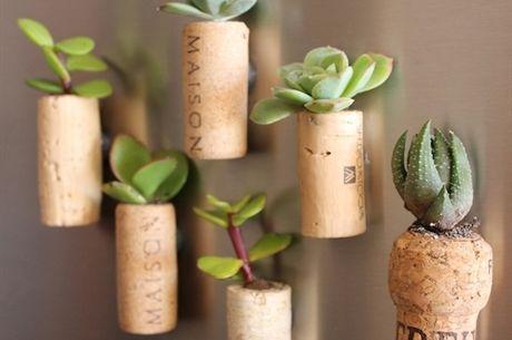 cork_planters18