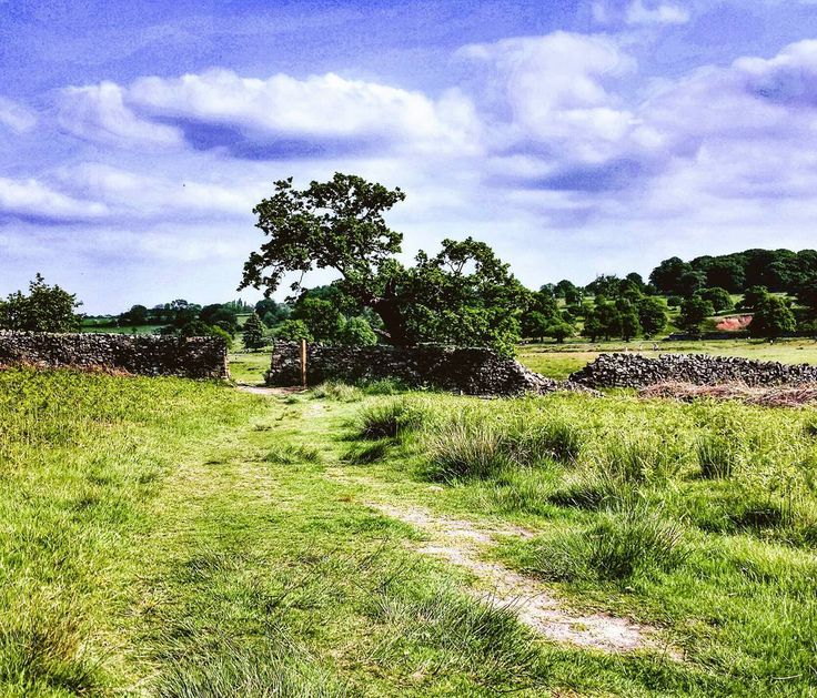 Which path will you take the one marked out or your own? #uk #bradgatepark #trip #explore #adventure #hike #countryside #sky #countrylife
