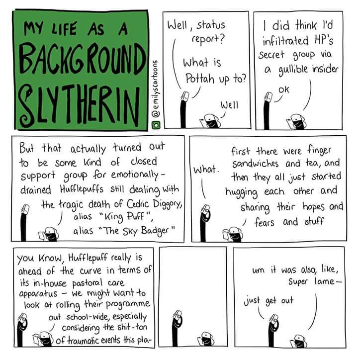 Best Proud Slytherin Images On   Harry Potter Stuff
