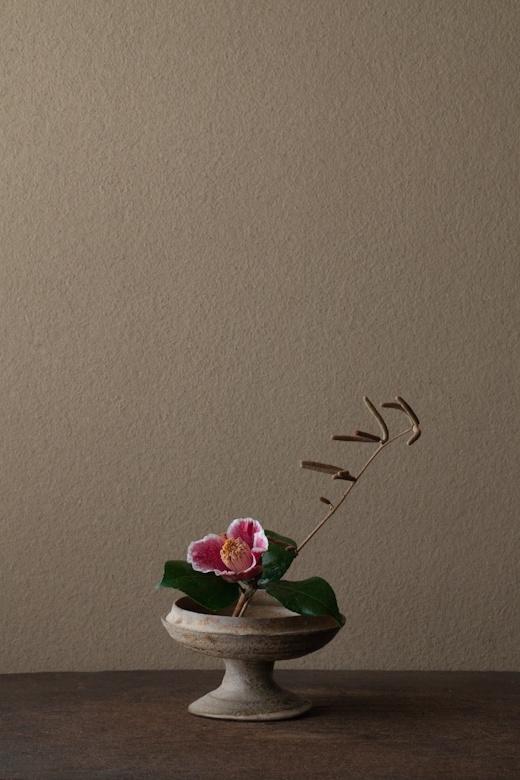 2012年2月3日(金)      榛の実は西洋では食用です。ヘーゼルナッツ。  花=榛(ハシバミ)、椿「隠れ磯」(ツバキ/カクレイソ)  器=須恵器高杯(古墳時代)