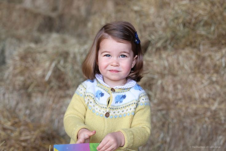 Princess Charlotte new photo released in honor of 2nd birthday