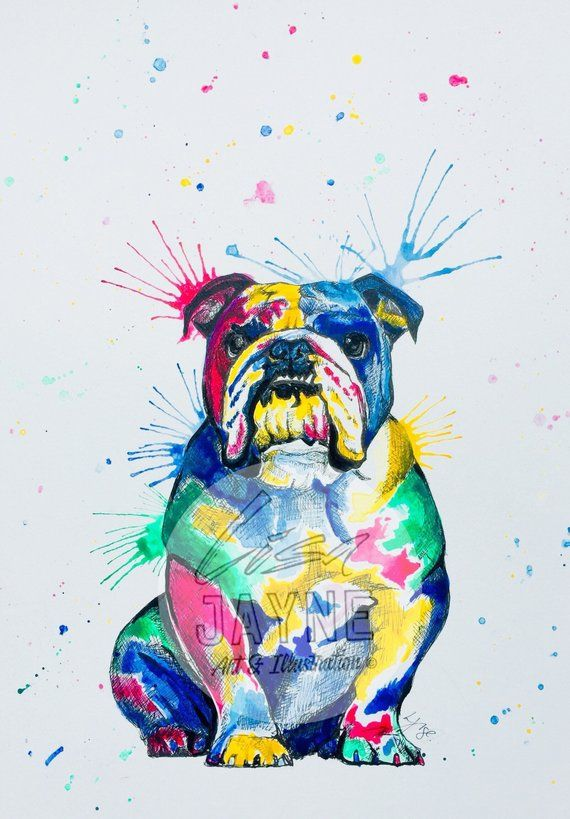 Englische Bulldogge Print A3 Wand Kunst Dekor Innenraume Farbe
