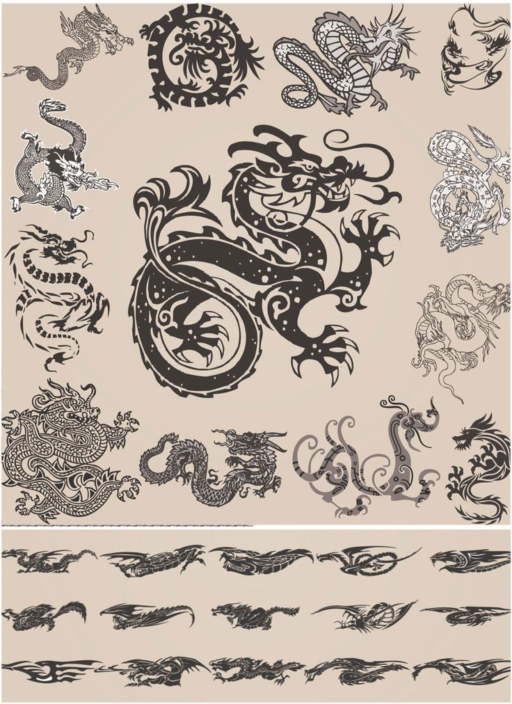 chinese dragon  images | Ornate chinese dragon vector | Free Vector Stock illustrations, art ...
