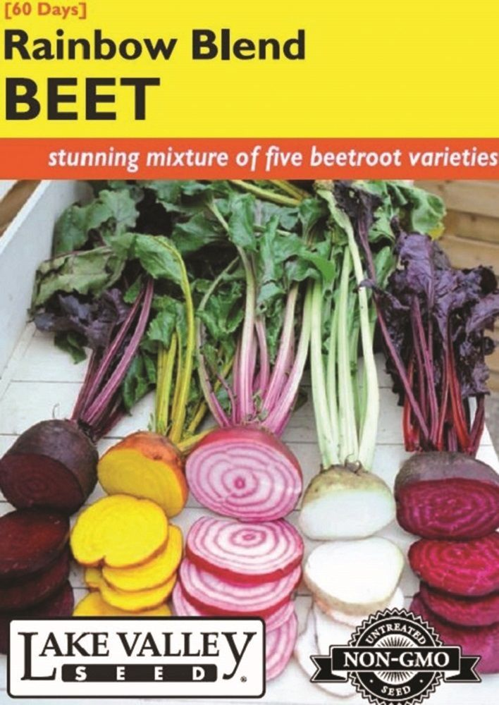 Rainbow Blend Beet Seeds - 1 gram
