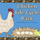 This is a Chicken Life Cycle pack that you can use in conjunction with hatching eggs in your classroom! If you prefer, you can also use the pack wi...