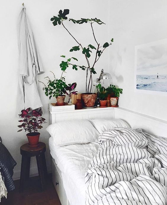 Plants at bedside, what's not to love about this gorgeous bedroom!
