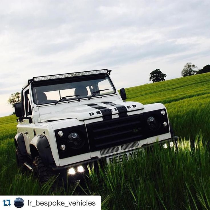 Land Rover Defender 90 Td4 Pickup-Twisted...in jungle, Lol)