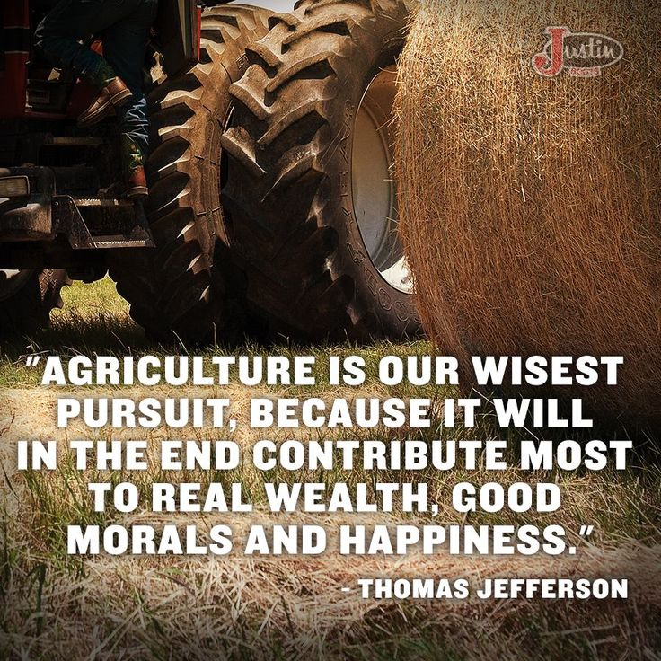 No kidding.  Tell that to corporate farming.